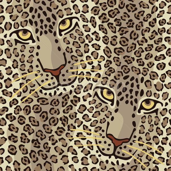 Kedi çift iki kediler Stok fotoğraf © Lisann
