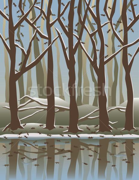 Cztery pory roku lasu drzew wody charakter śniegu Zdjęcia stock © Lisann