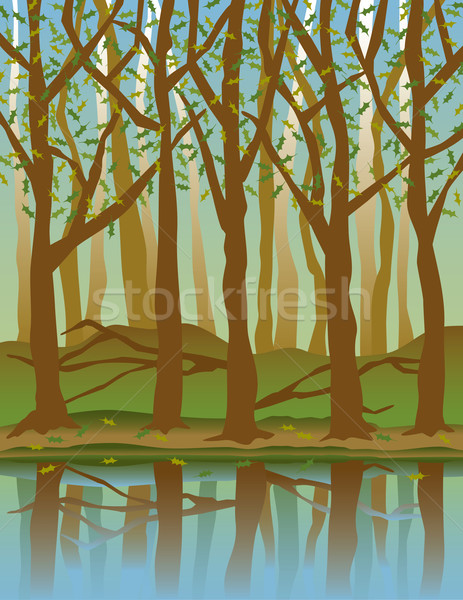 Négy évszak erdő fák víz tavasz természet Stock fotó © Lisann