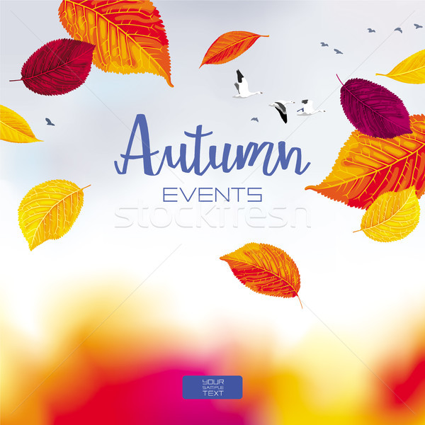 Autumn sky vector banner Stock photo © LisaShu