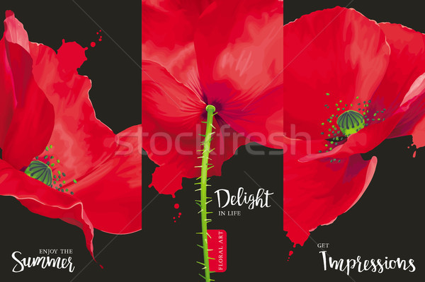Creative vector concept for brochure cover. Stock photo © LisaShu