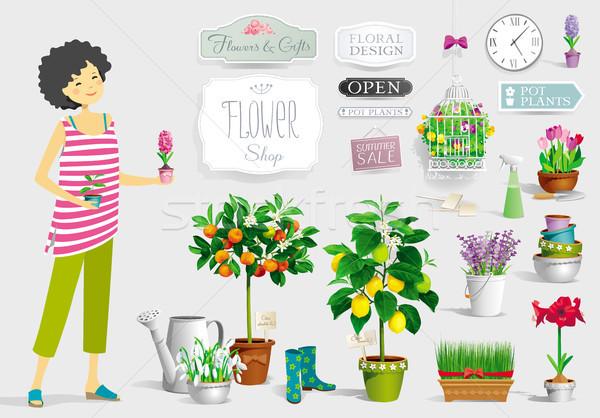 Tuinman meisje vector planten groot collectie Stockfoto © LisaShu