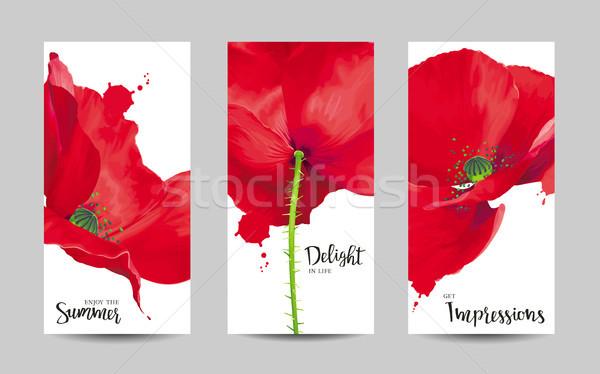 Stockfoto: Luxueus · heldere · Rood · vector · poppy · bloemen