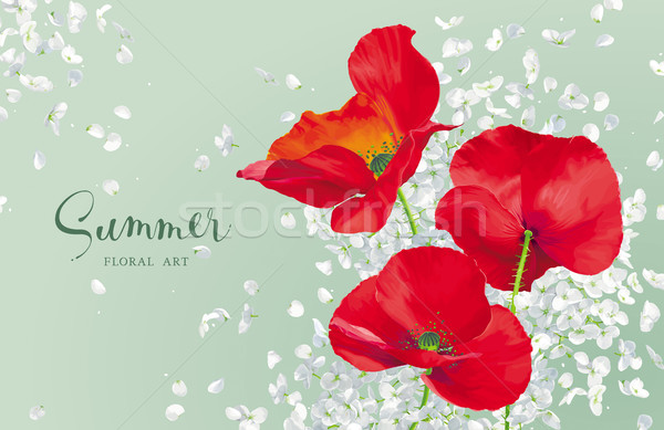 Luxurious bright red vector Poppy and white Hydrandea flowers dr Stock photo © LisaShu