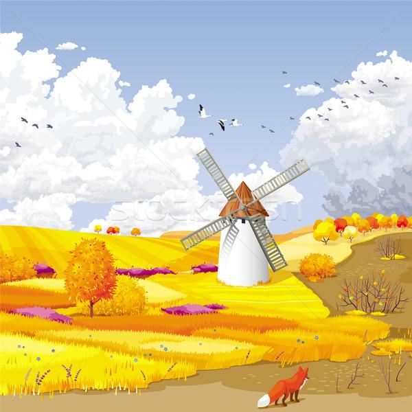 Autumn vector landscape Stock photo © LisaShu
