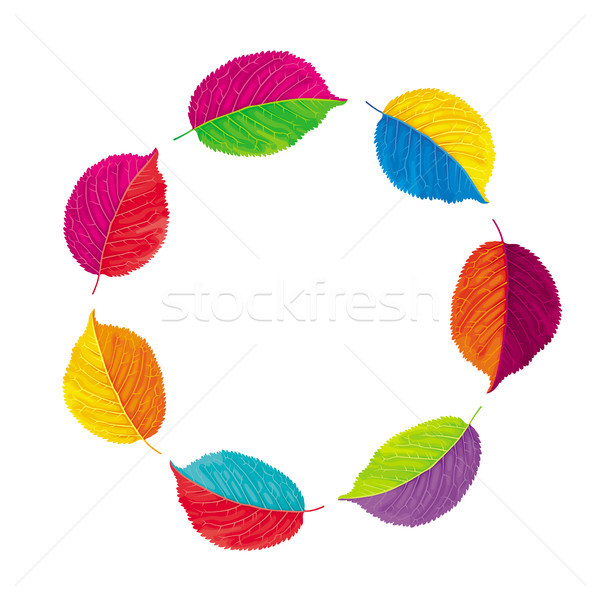 Autumn leaves vector wreath Stock photo © LisaShu