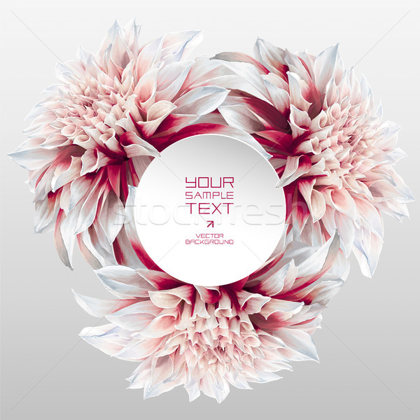 Dahlia flower rosette with round paper label Stock photo © LisaShu