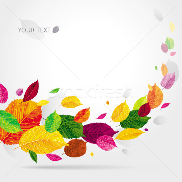 Seasonal autumn leaves background Stock photo © LisaShu
