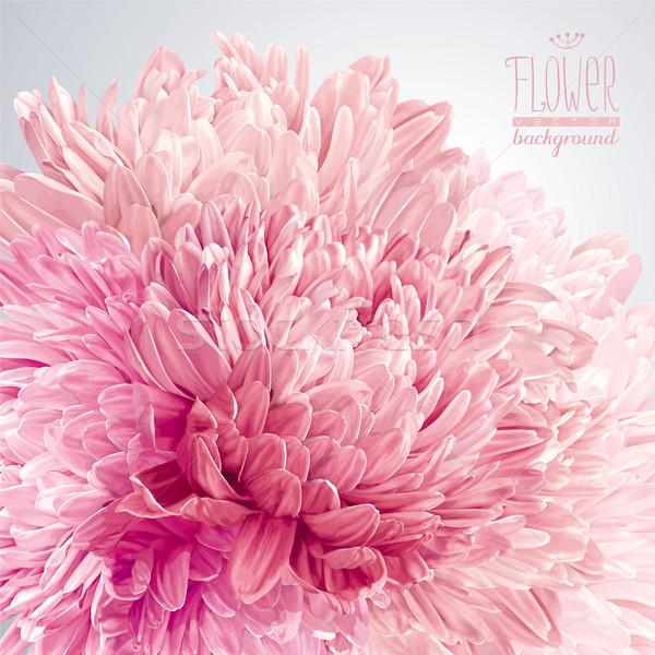 Vector moderne kunst luxueus roze Stockfoto © LisaShu