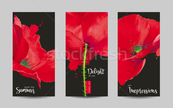 Luxurious bright red vector Poppy flowers paintings set on black Stock photo © LisaShu