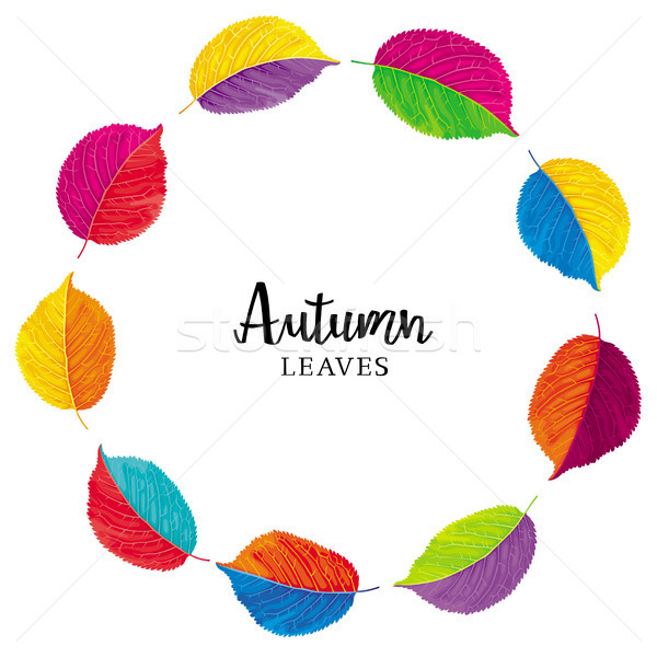 Kleurrijk bladeren vector krans gekleurd Stockfoto © LisaShu