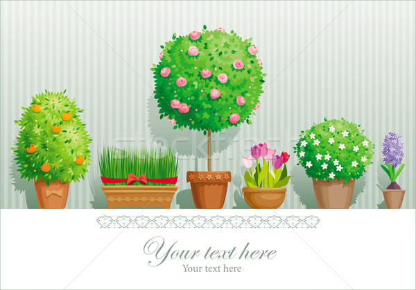 Pot planten vintage wenskaart collectie bloem Stockfoto © LisaShu