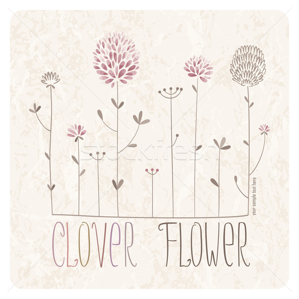 Clover Flower Meadow Stock photo © LisaShu
