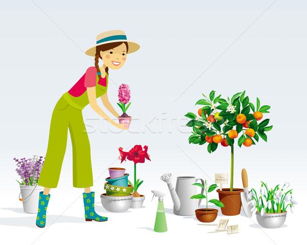 Tuinman meisje vector planten collectie pot Stockfoto © LisaShu