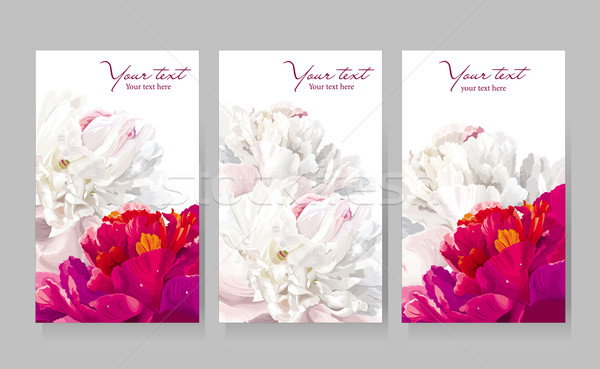 Set of peony flower greeting cards Stock photo © LisaShu