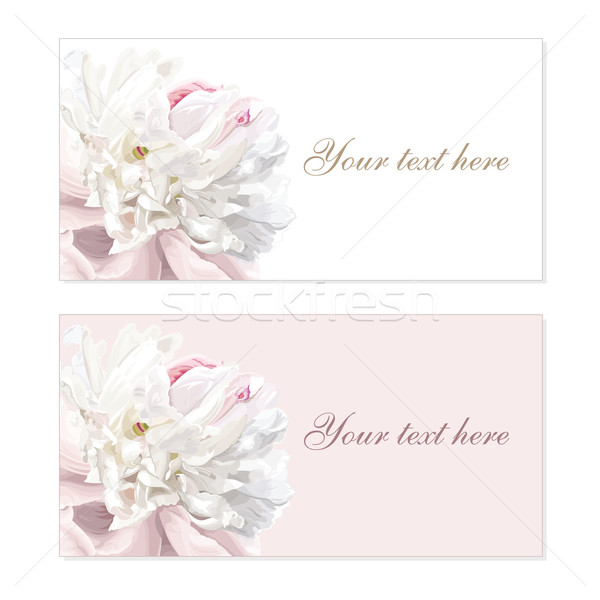 Set of flower greeting cards Stock photo © LisaShu