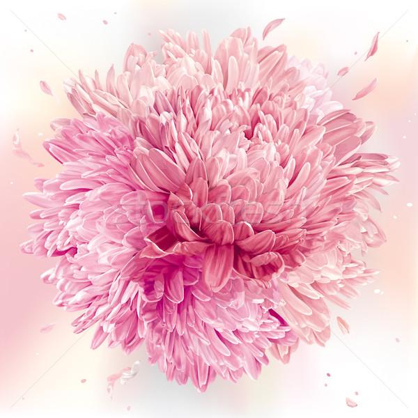 Roze bol moderne kunst bloem vector Stockfoto © LisaShu
