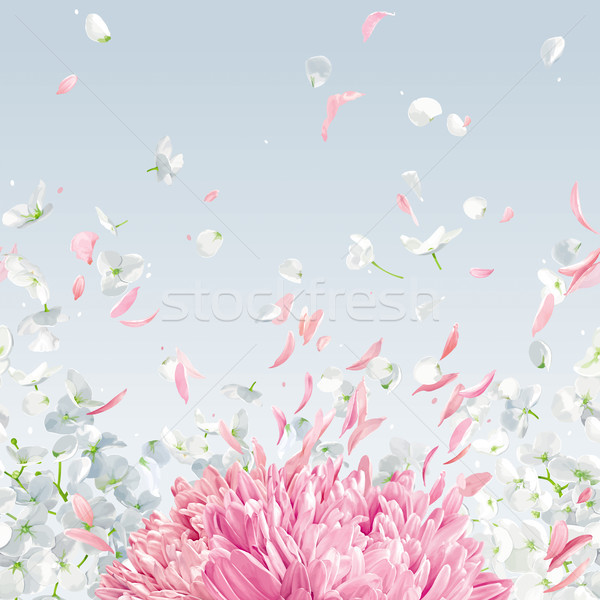 Flying petals vector  horizontal seamless background Stock photo © LisaShu