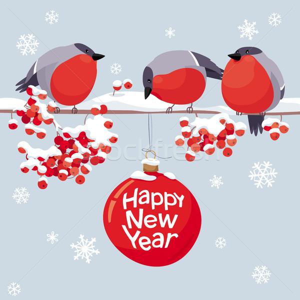 Vector bullfinches and rowan Christmas and New Year image Stock photo © LisaShu