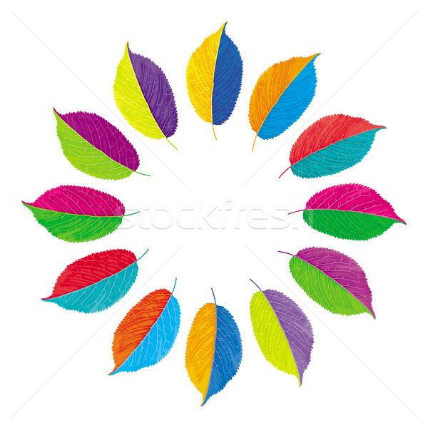Vector color wheel with opposite colors Stock photo © LisaShu