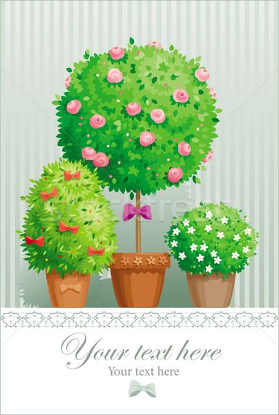 Pot çiçekler ağaçlar bağbozumu tebrik kartı bitkiler Stok fotoğraf © LisaShu