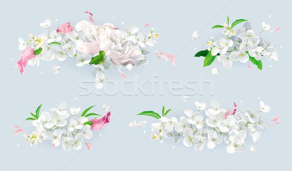 Witte roze zomerbloemen boeket ingesteld vintage Stockfoto © LisaShu