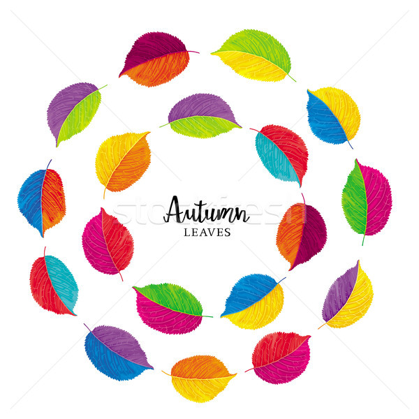 Floral vector color wheels Stock photo © LisaShu