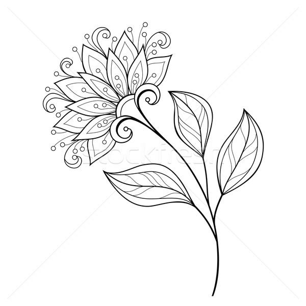 Vetor belo monocromático contorno flor do vetor flor Foto stock © lissantee