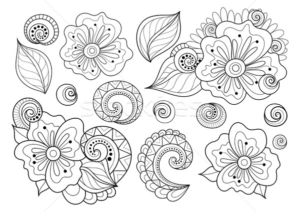 Vector Set of Beautiful Monochrome Flowers and Leaves Stock photo © lissantee