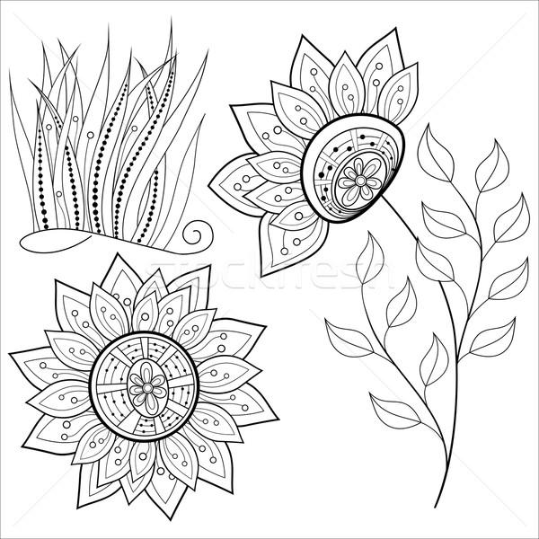 Vetor conjunto monocromático contorno flores folhas Foto stock © lissantee