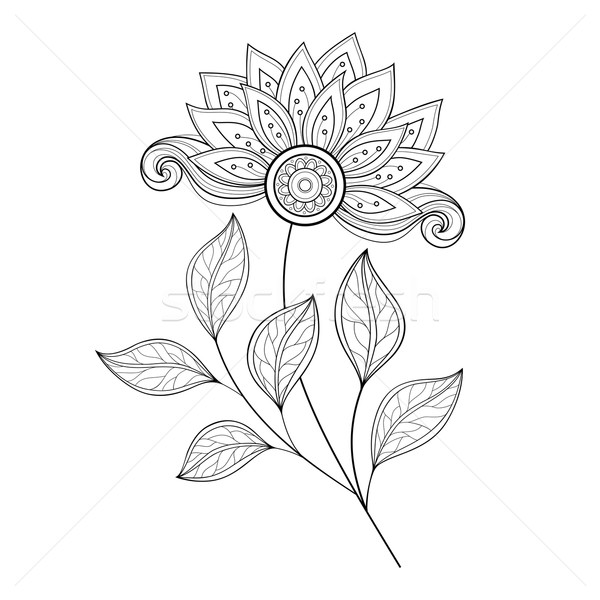 Vector Beautiful Monochrome Contour Flower Stock photo © lissantee