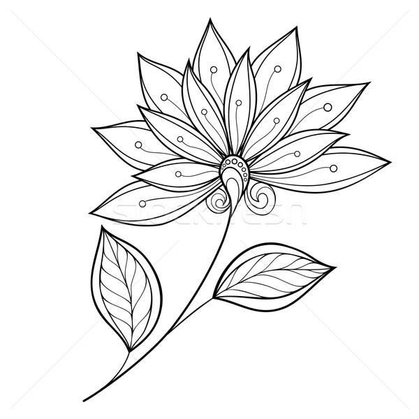 Photo stock: Vecteur · belle · monochrome · contour · fleur · vecteur · fleur