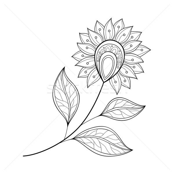 Stock fotó: Vektor · gyönyörű · monokróm · körvonal · virág · vektor · virág