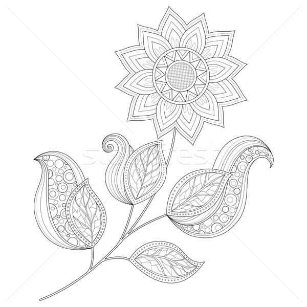 Vector Beautiful Monochrome Contour Flower Stock photo © lissantee