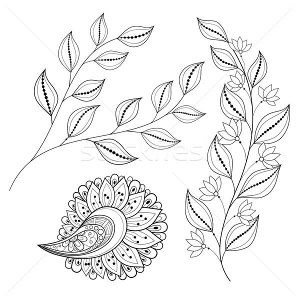 Vektor Set monochrome Kontur Blumen Blätter Stock foto © lissantee