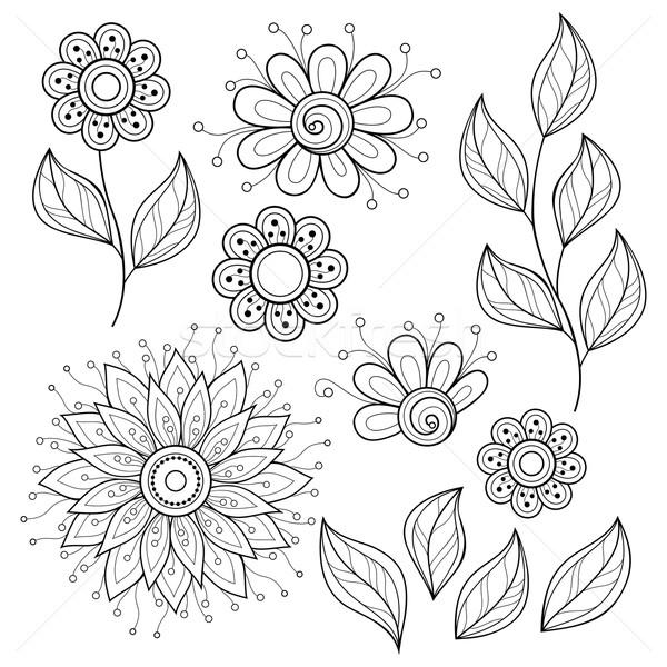 Vecteur monochrome contour fleurs laisse Photo stock © lissantee