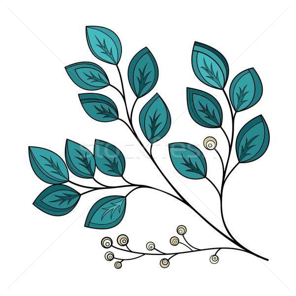 вектора красивой лист цветочный Сток-фото © lissantee