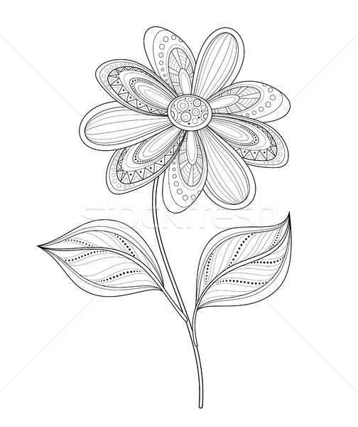 Vector Beautiful Contour Flower Stock photo © lissantee