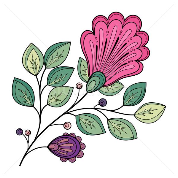 Vektor gyönyörű színes körvonal virág vektor virág Stock fotó © lissantee
