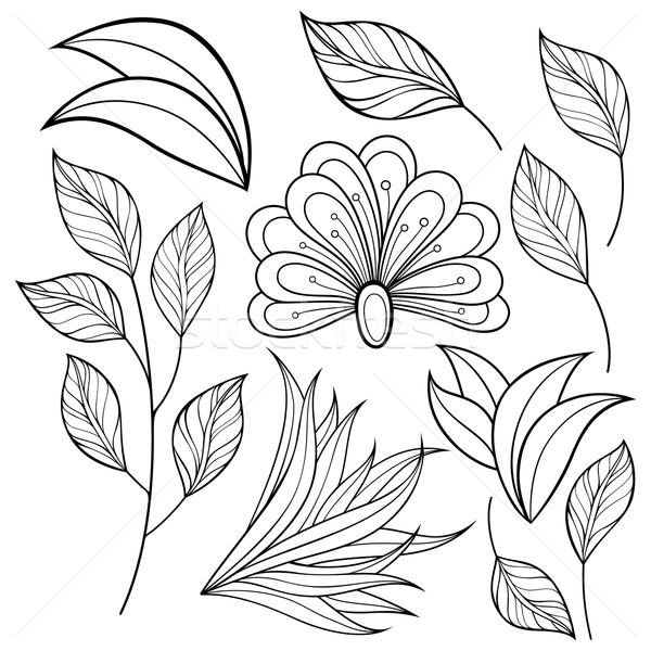 Vector Set of Monochrome Contour Flowers and Leaves Stock photo © lissantee