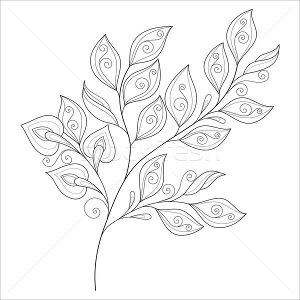 Vector Beautiful Monochrome Contour Leaf Stock photo © lissantee