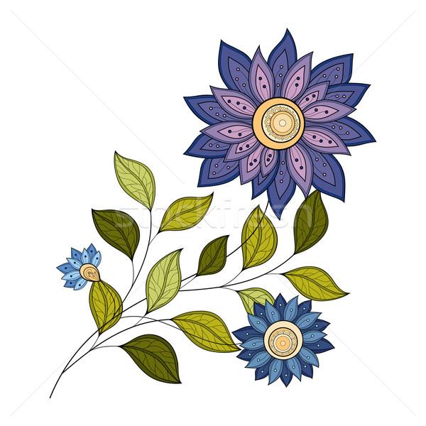 Vektör güzel renkli çiçek vektör çiçek Stok fotoğraf © lissantee