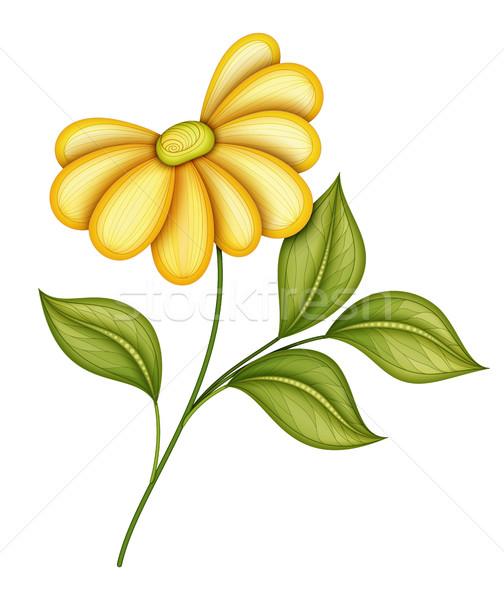 Vector mooie bloem vector bloem object geïsoleerd Stockfoto © lissantee