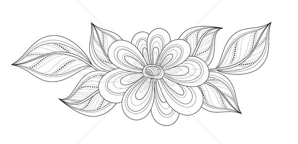 Wektora piękna kontur kwiat wektora kwiat obiektu Zdjęcia stock © lissantee