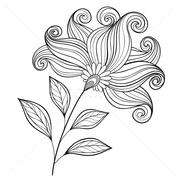 Stock foto: Vektor · schönen · monochrome · Kontur · Blume · Vektor · Blume