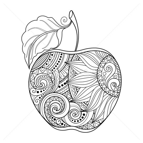 Vektor monochrome Kontur Apfel Hand gezeichnet dekorativ Stock foto © lissantee