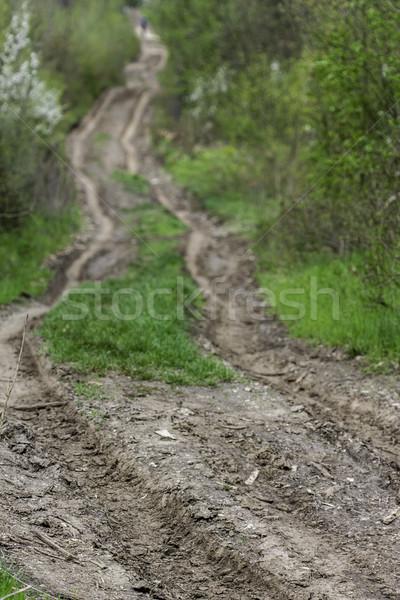 Onverharde weg landelijk vuil pad milieu Stockfoto © LIstvan