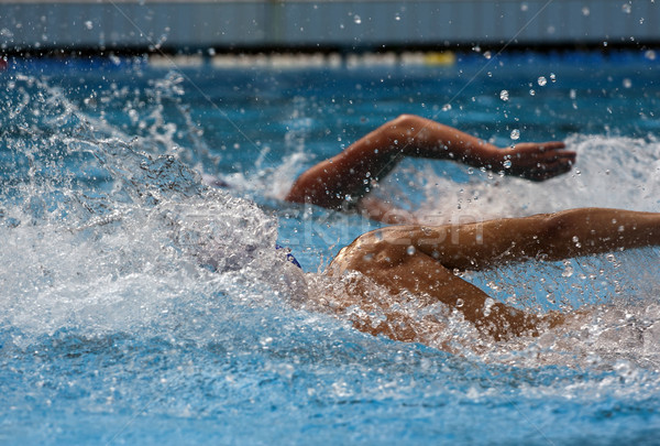 swimming Stock photo © LIstvan