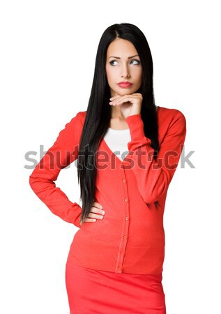 Young brunette businesswoman. Stock photo © lithian