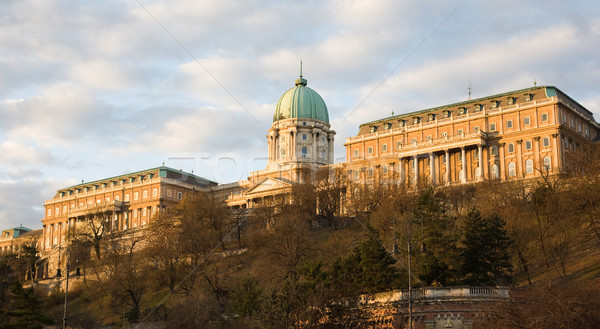 Buda castle in Budapest in very early moring light. Stock photo © lithian
